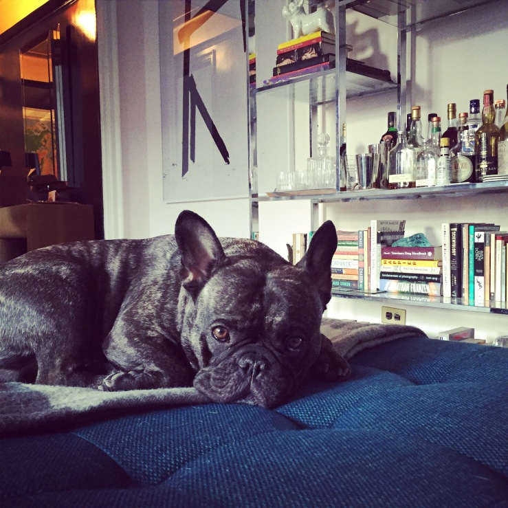 Hank's day off